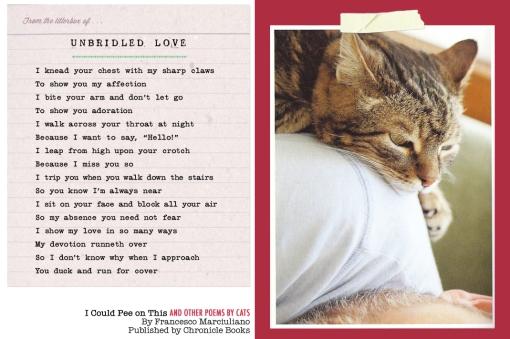 ICPOT VD Poem